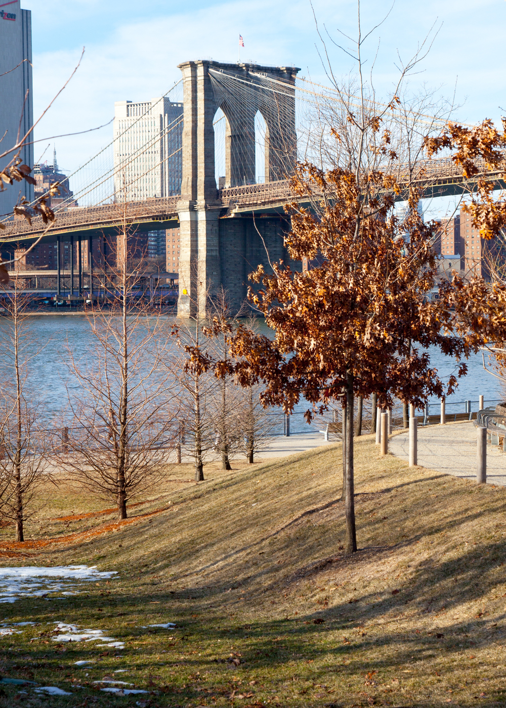I saw this shot as we were walking back from the Brooklyn Bridge Park, towards the subway. At another time of year, it would be a great shot, but with the winter kill leaving everything brown and dead, it isn't what it could be.