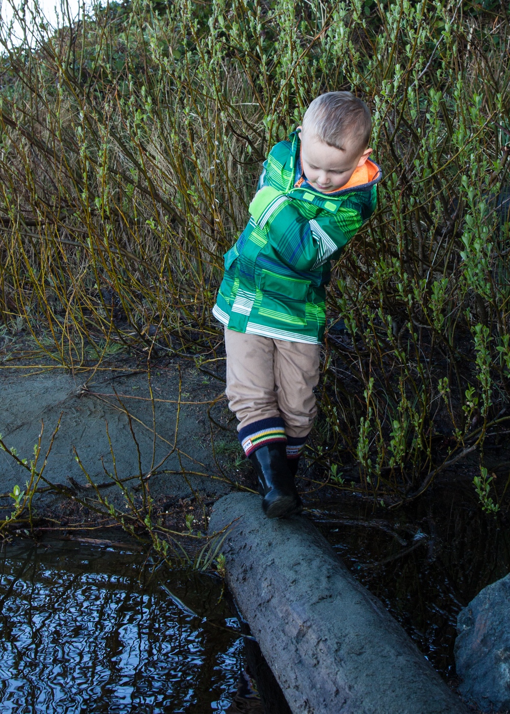 Ethan walking on a log - he ended up in the water right after this picture was taken...