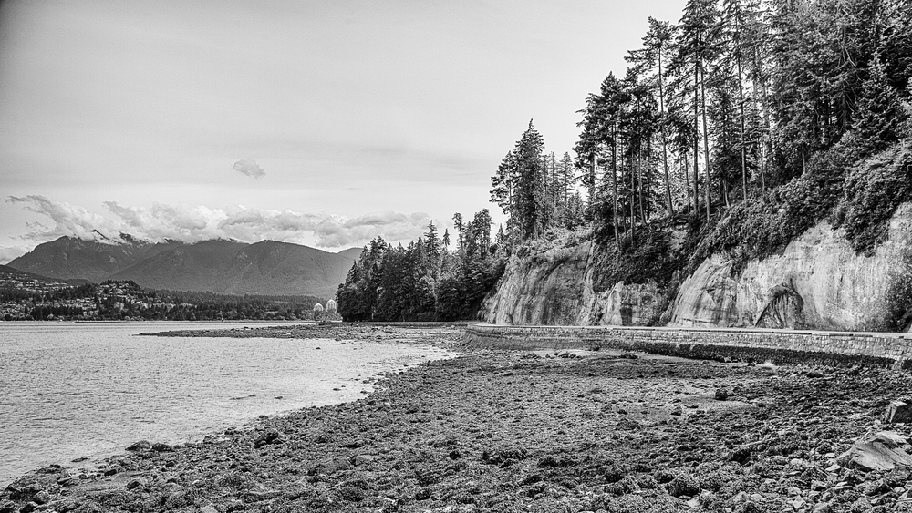 The seawall around Stanley Park.