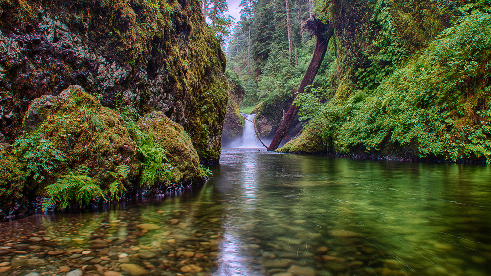 Upper Punchbowl Falls, at the end of the canyon.