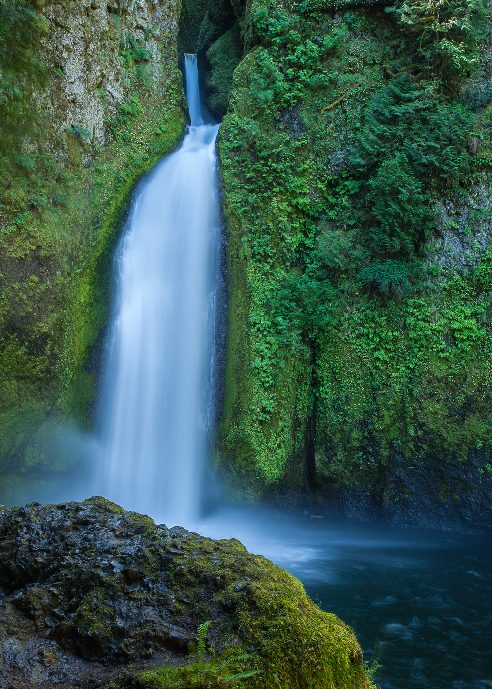 Wahclella Falls, tumbling through the rocks.