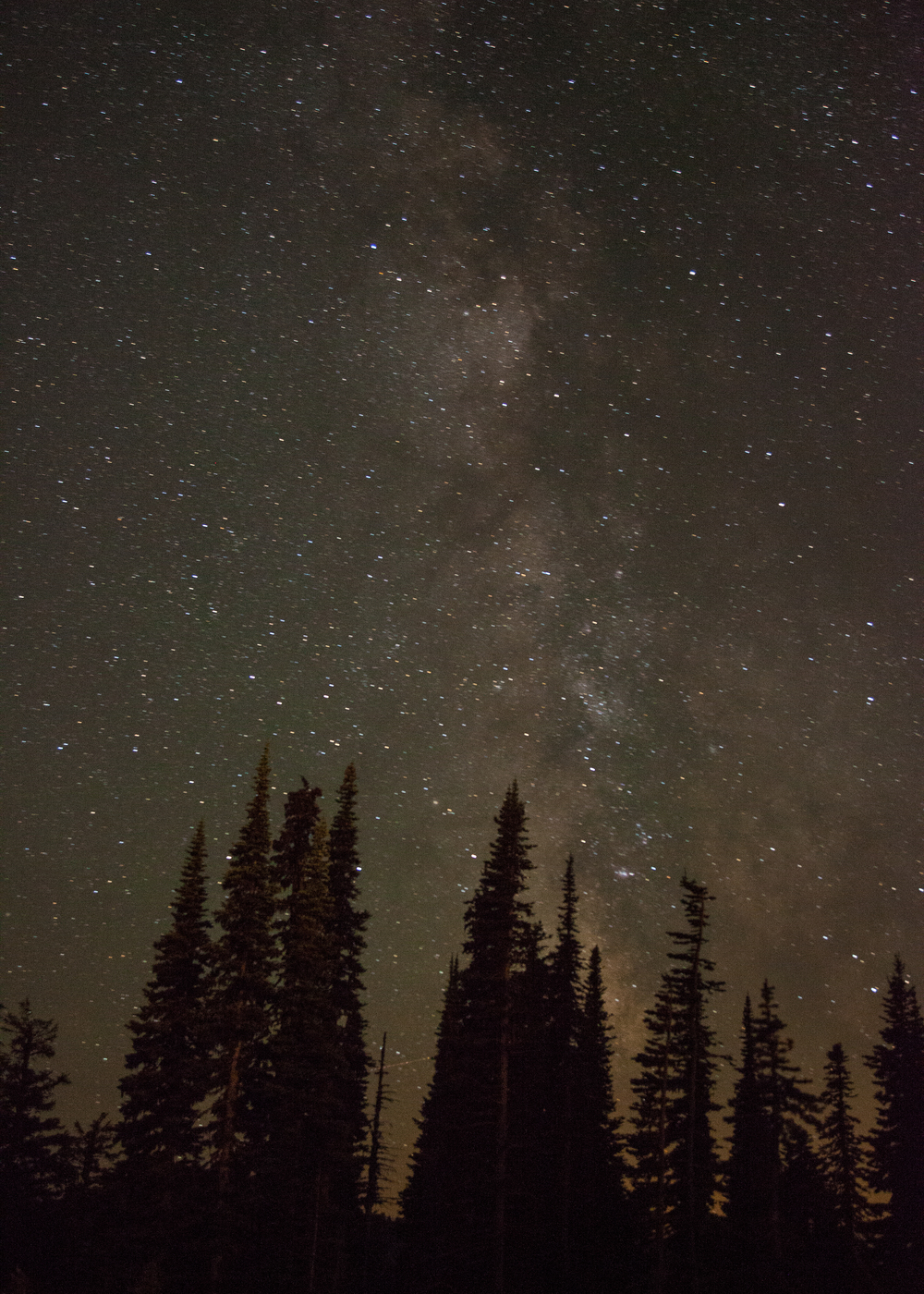 Mount Rainier-19.jpg