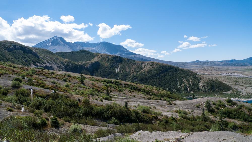 Mount St Helens-20.jpg