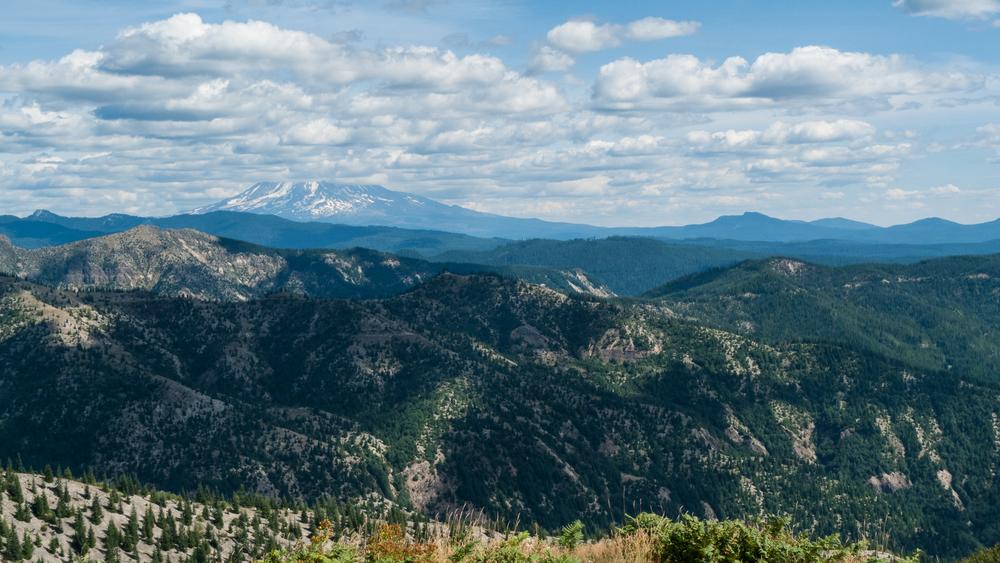 Mount St Helens-23.jpg