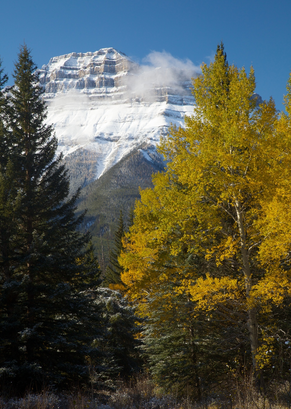 Banff++6338-683713200-O.jpg