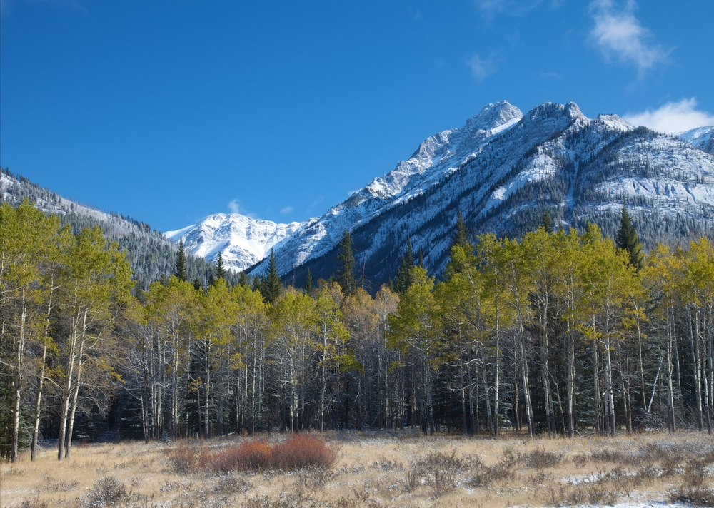 Banff++6344-683710973-O.jpg