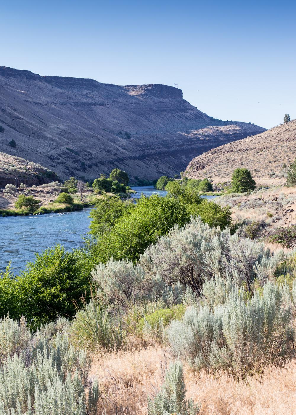 Hood River-50.jpg