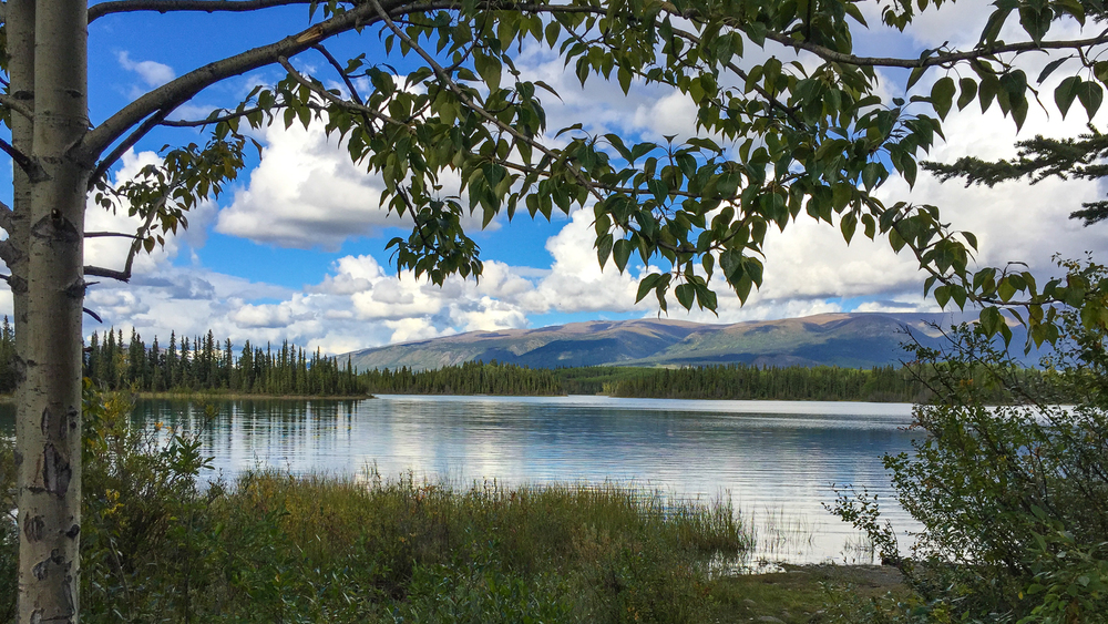 Yukon D5-17.jpg