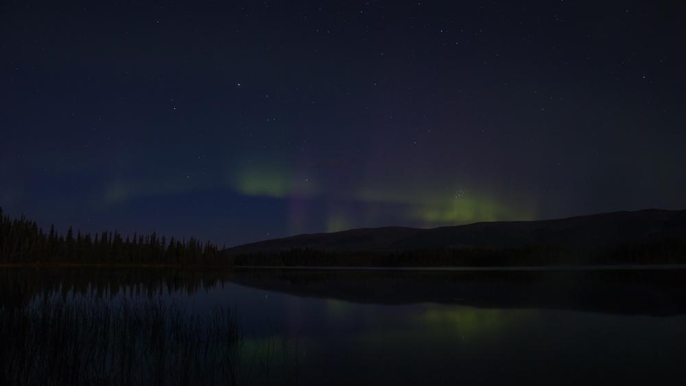 Yukon D5-33.jpg