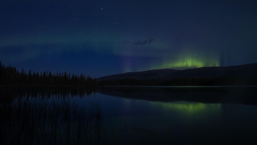 Yukon D5-34.jpg