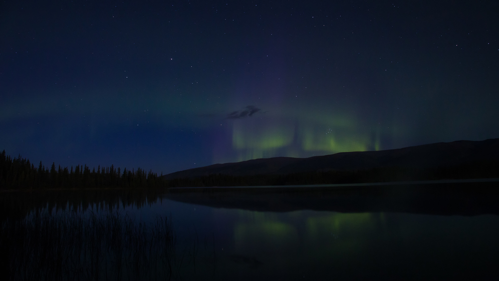 Yukon D5-36.jpg