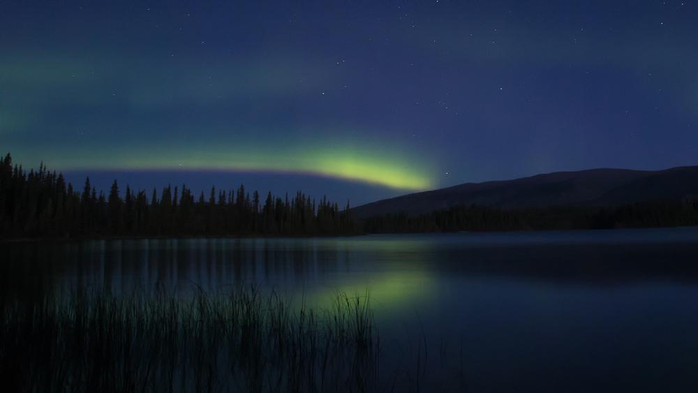 Yukon D5-39.jpg