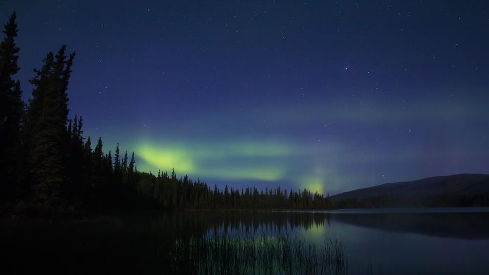 Yukon D5-40.jpg