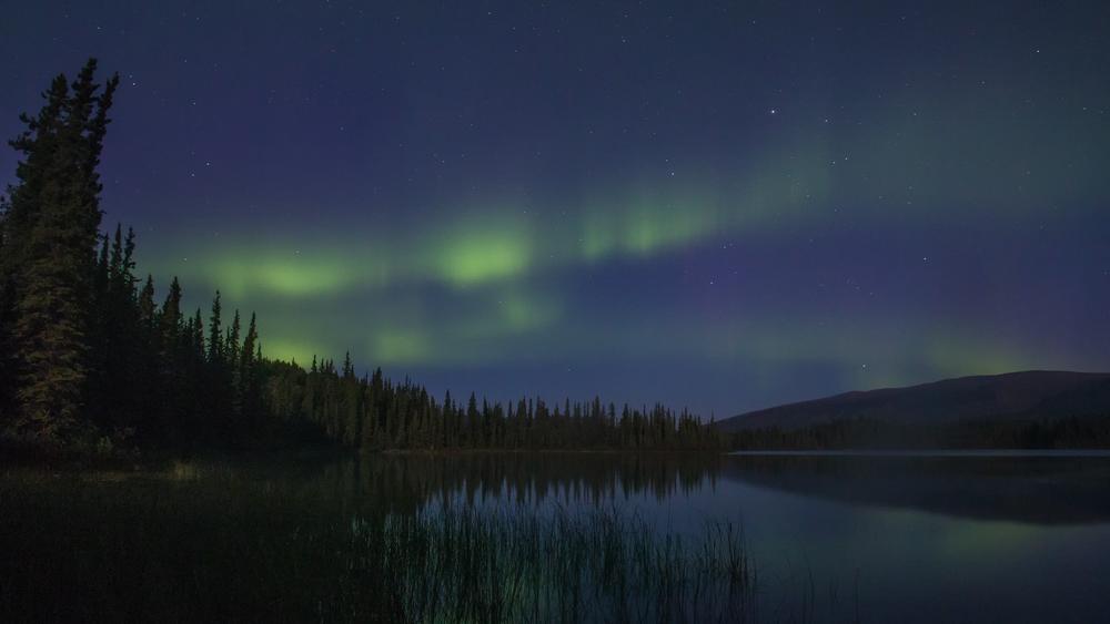Yukon D5-41.jpg