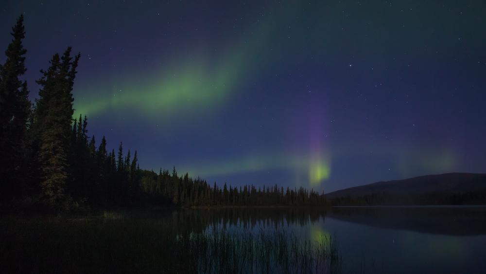 Yukon D5-43.jpg