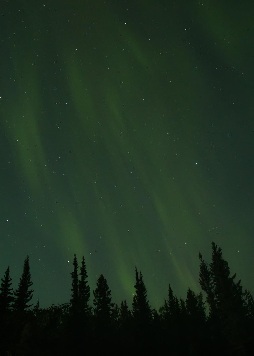 Yukon D5-44.jpg