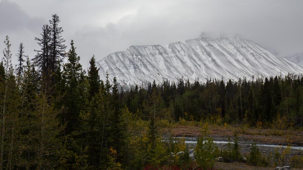 Yukon D8-14.jpg