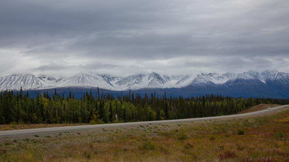 Yukon D8-12.jpg