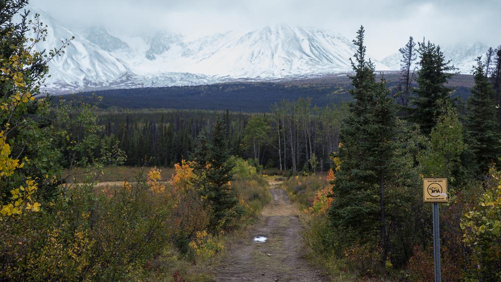 Yukon D8-18.jpg