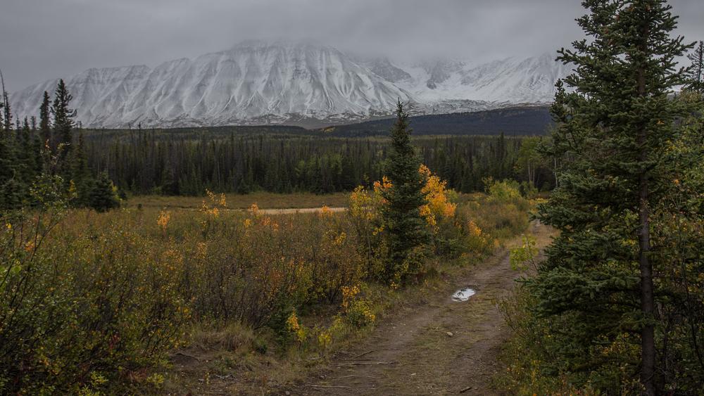 Yukon D8-20.jpg