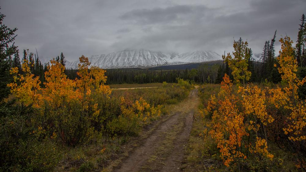 Yukon D8-21.jpg