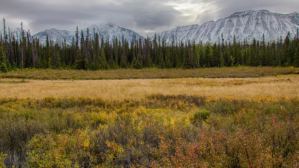 Yukon D8-44.jpg