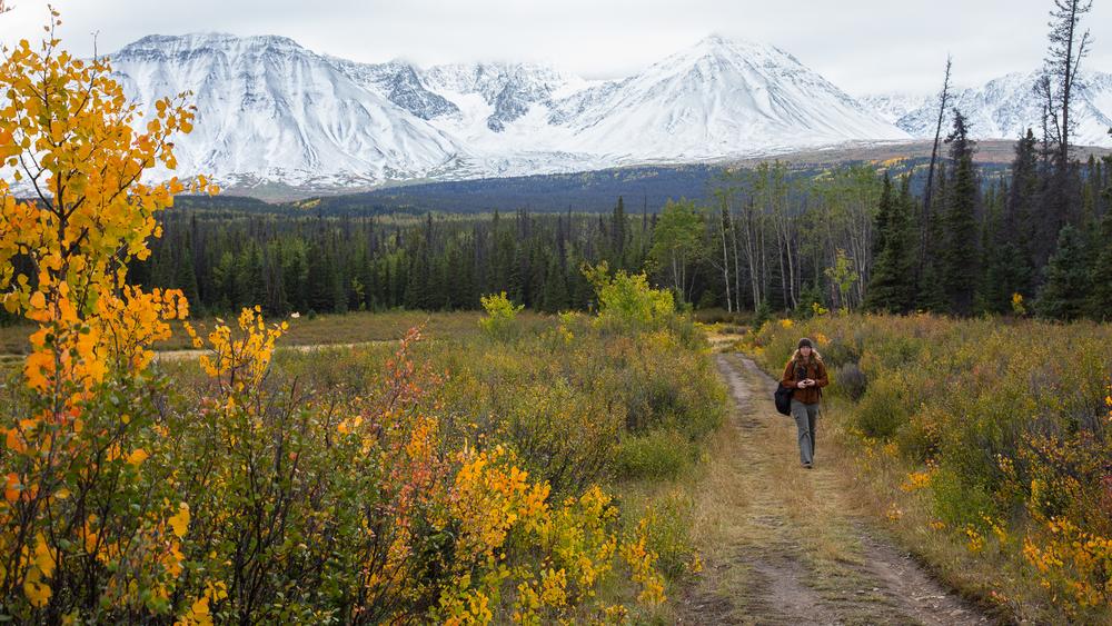 Yukon D8-47.jpg