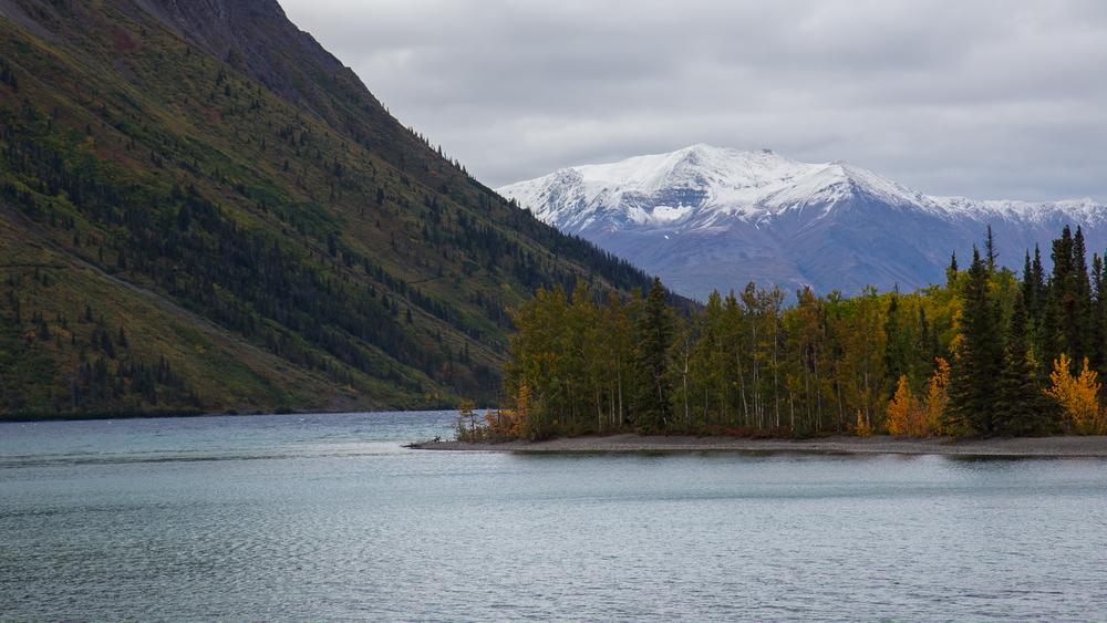 Yukon D8-54.jpg