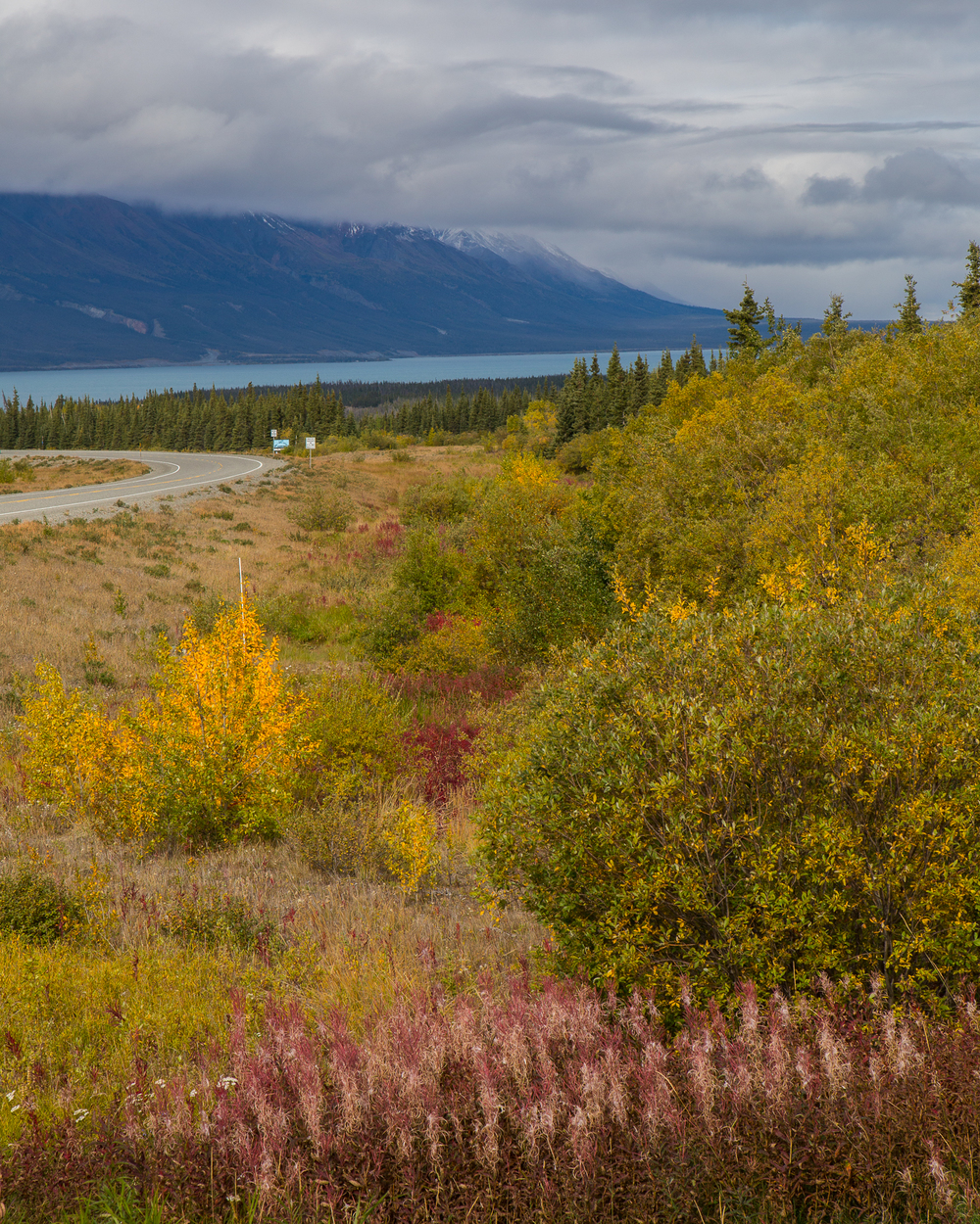 Beautiful view down onto Kluane Lake.