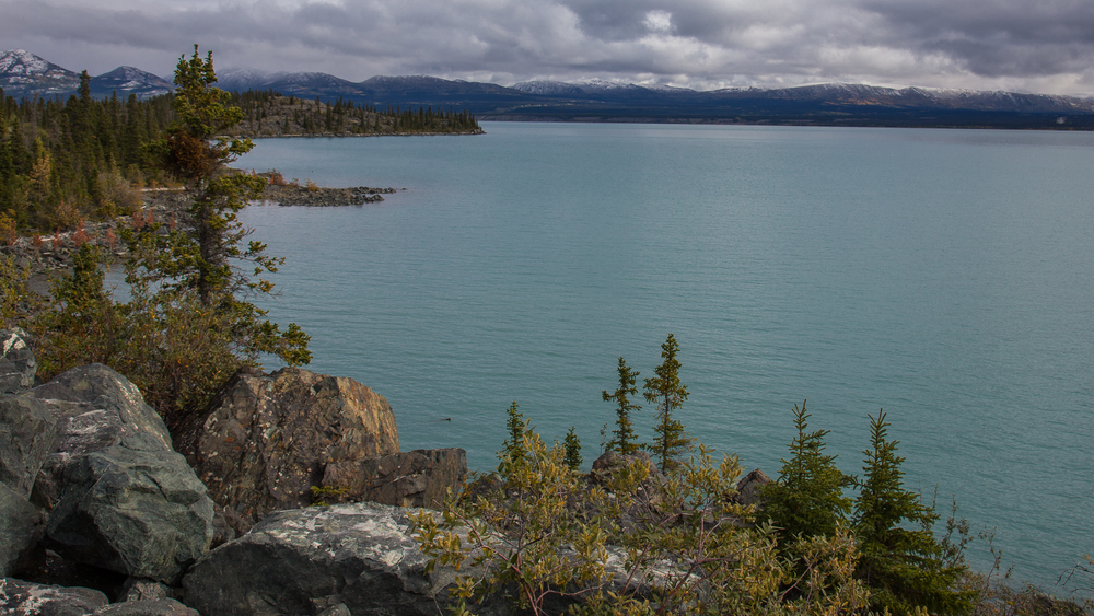 Yukon D9-26.jpg