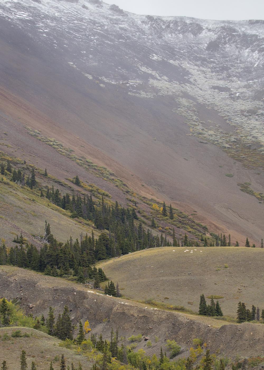 Yukon D9-20.jpg