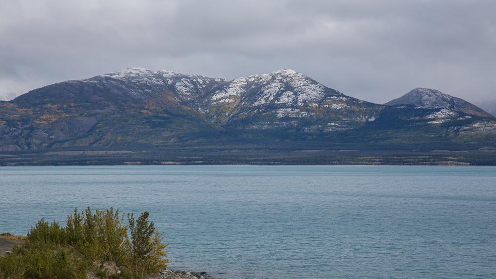 Yukon D9-28.jpg