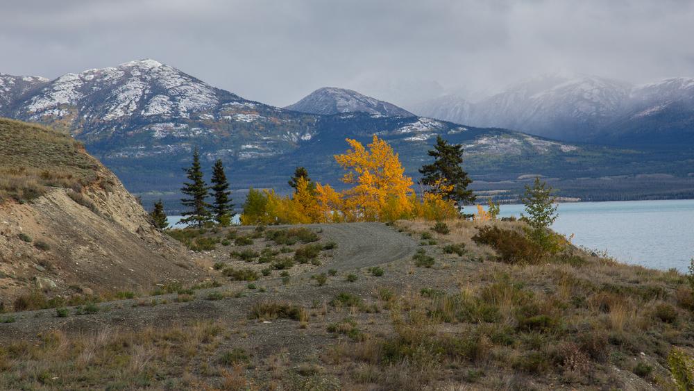 Yukon D9-29.jpg