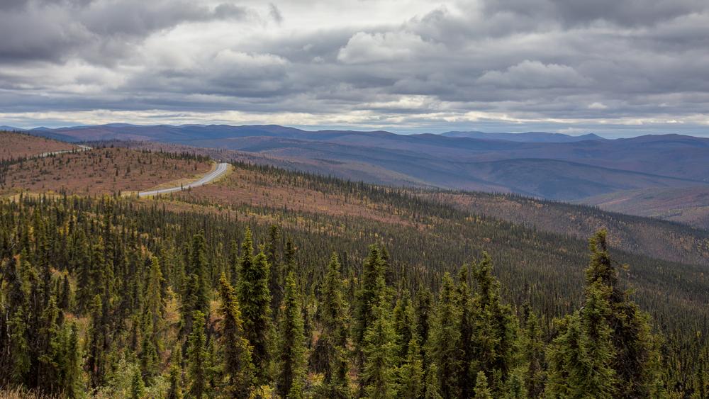 Yukon D10-28.jpg