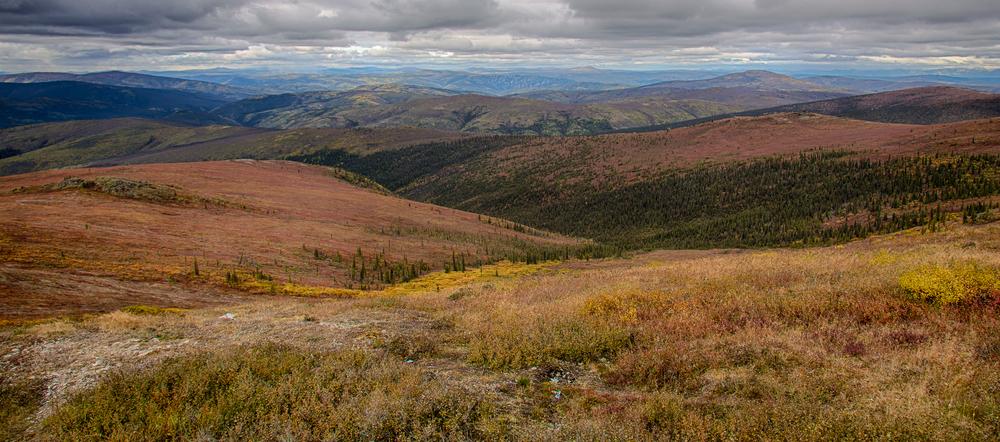 Yukon D10-32.jpg