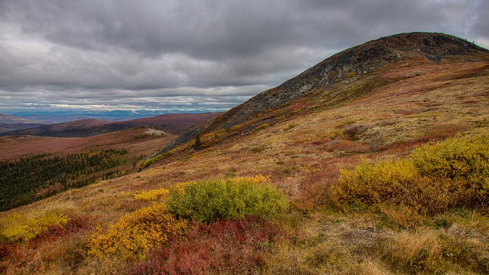 Yukon D10-33.jpg