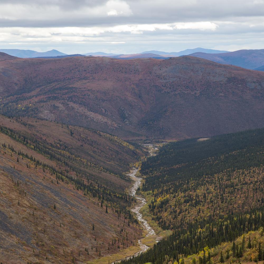 Yukon D10-36.jpg