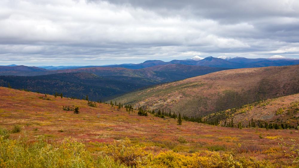 Yukon D10-39.jpg