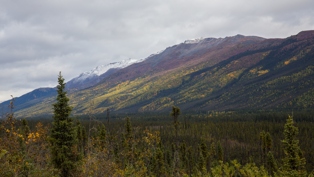 More of the amazing scenery as we headed up the Dempster Highway.