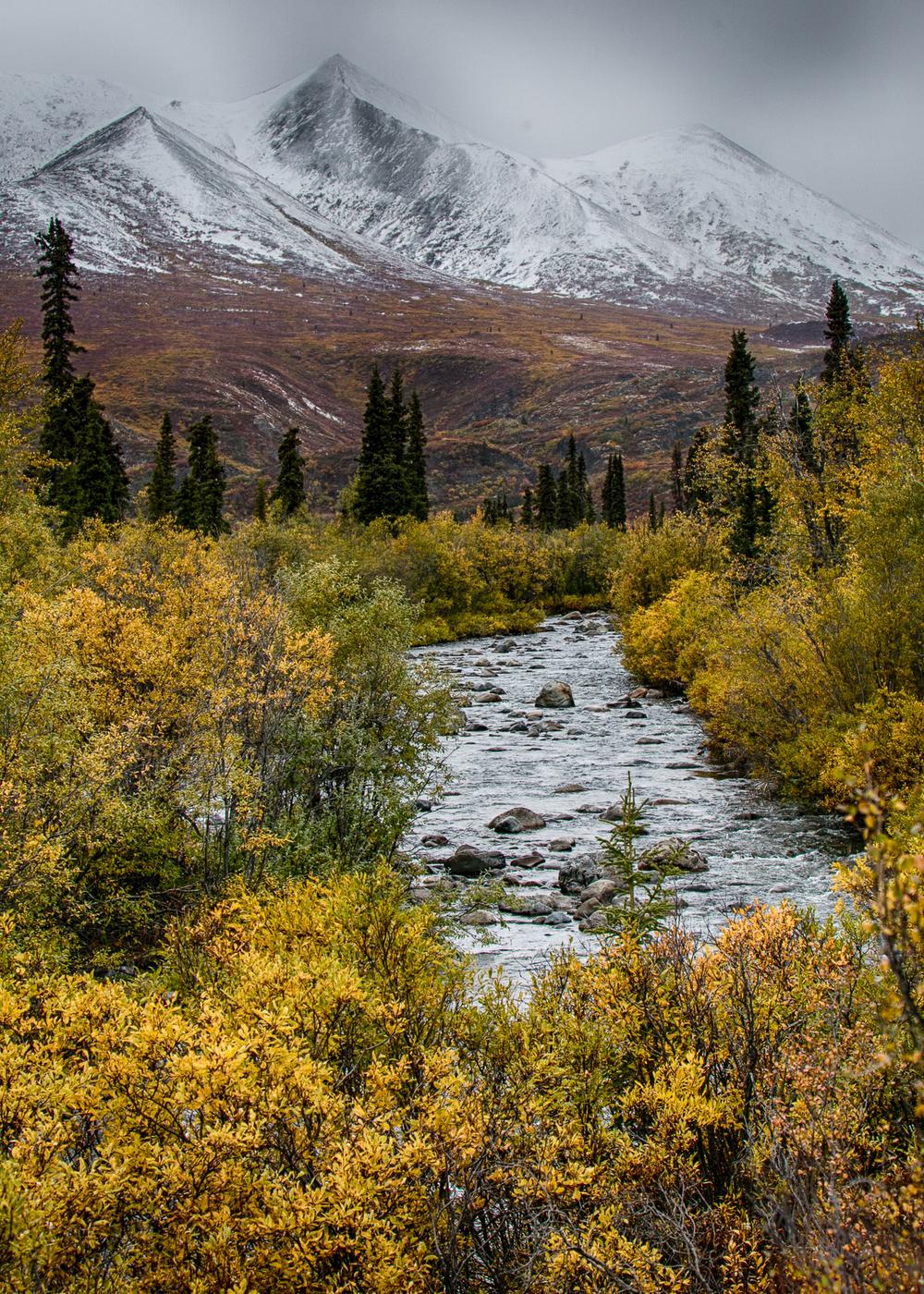 Yukon D11-49.jpg