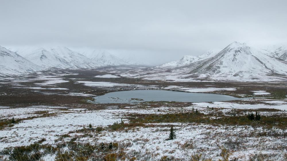 Yukon D12-1.jpg