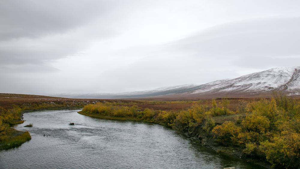 Yukon D12-2.jpg
