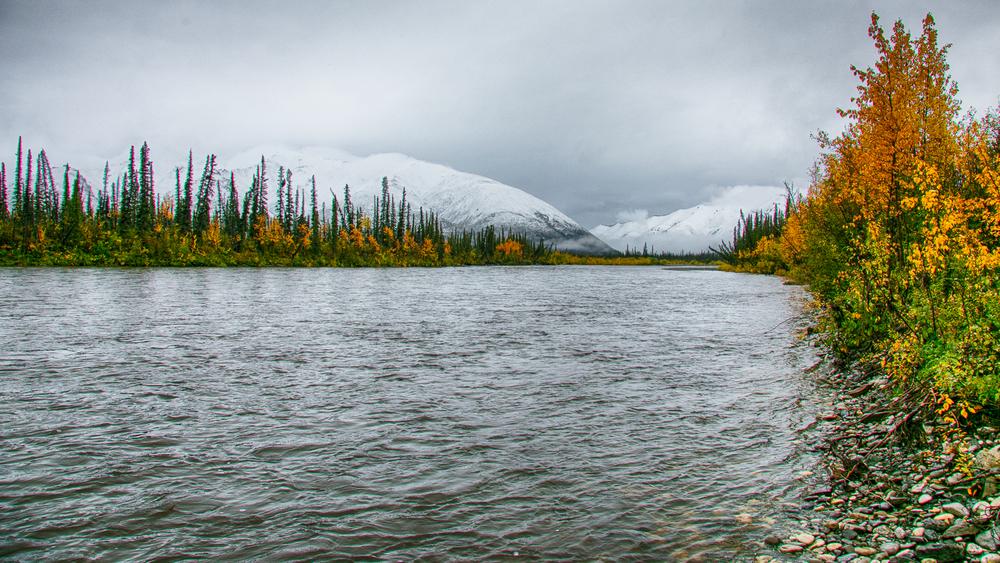 Yukon D12-9.jpg