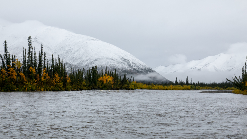 Yukon D12-10.jpg