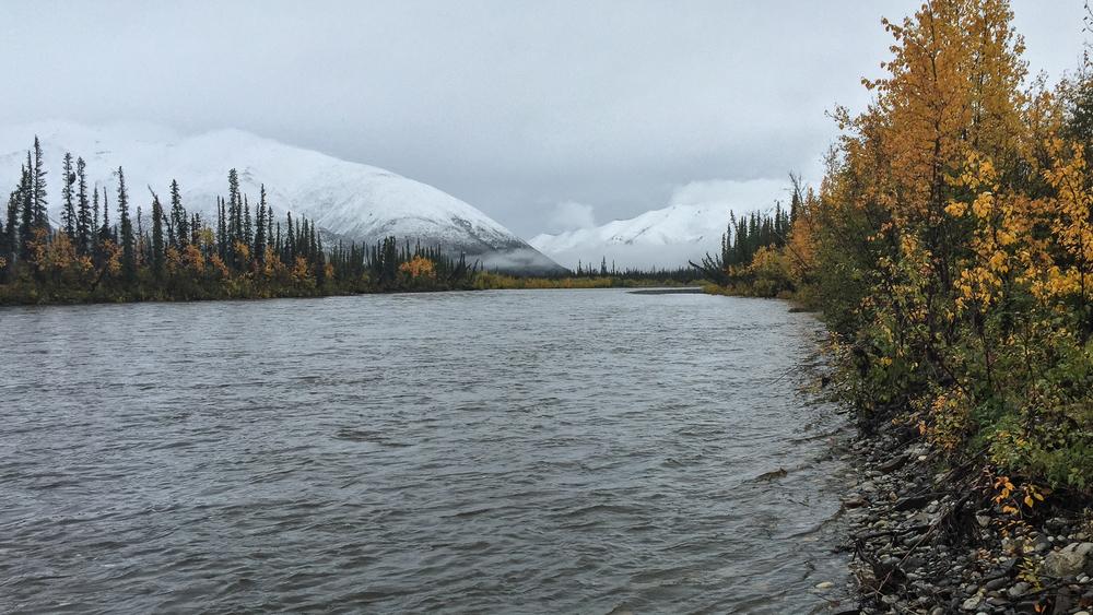 Yukon D12-12.jpg