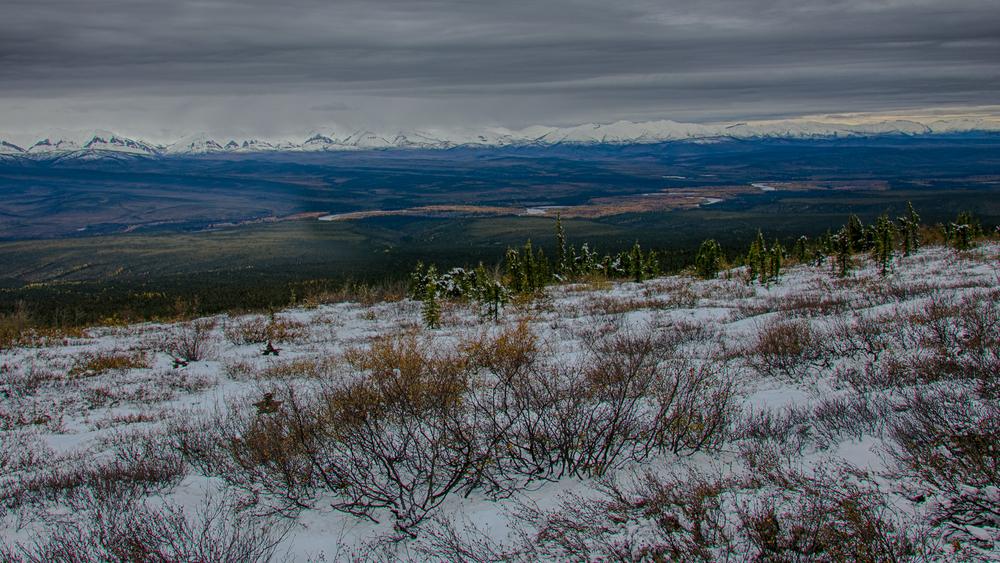 Yukon D12-30.jpg