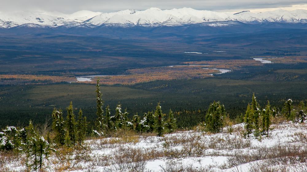 Yukon D12-32.jpg