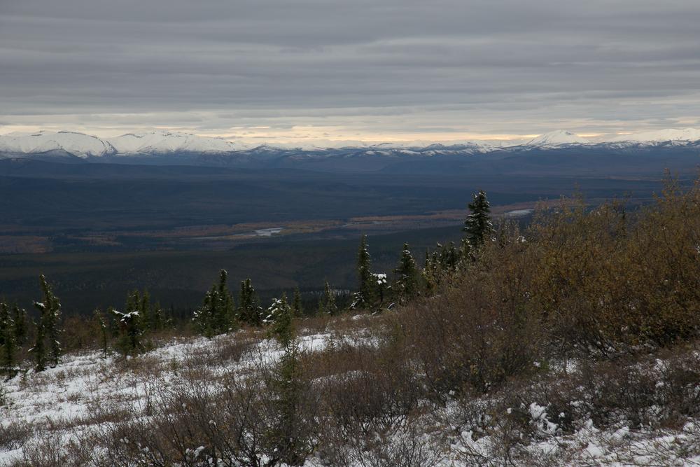 Yukon D12-35.jpg