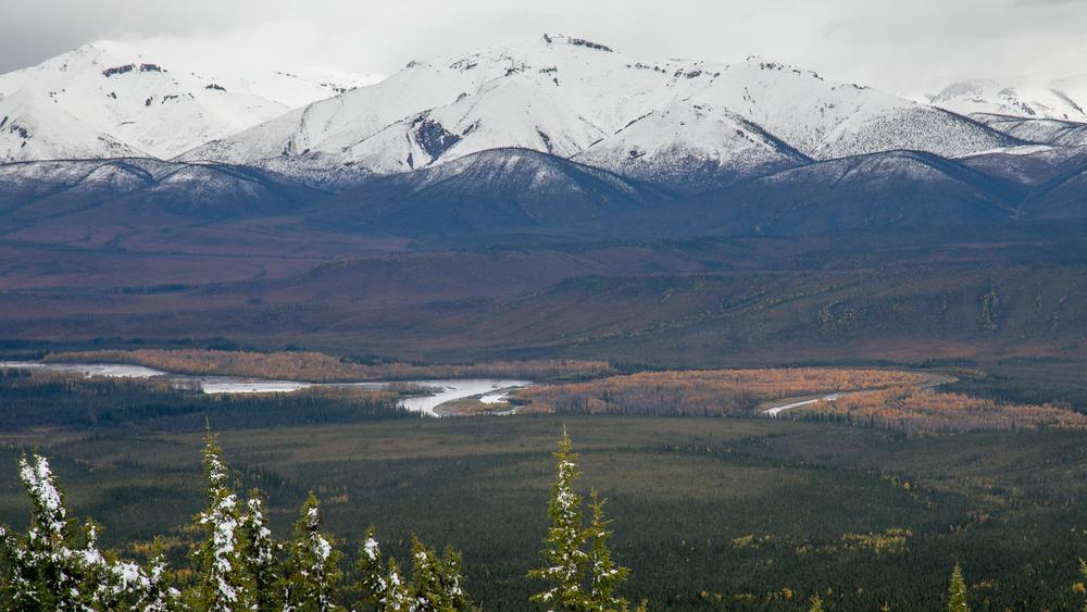 Yukon D12-36.jpg