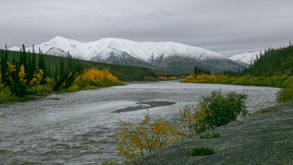 Yukon D12-37.jpg